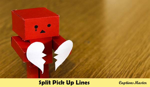 Split Pick Up Lines